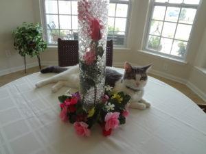 underwater roses centerpiece wedding